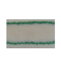 Roller fabric with green stripe
